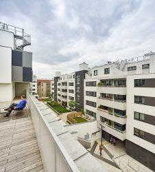 013_wohnhausanlage-breitensee-wien_g.o.y.a.-architekten_by_kurt-hoerbst_121438