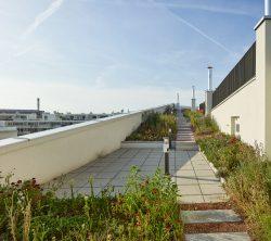 Wohnanlage OASE WIEN_g.o.y.a. Architektur ___©_KURT HOERBST 2015