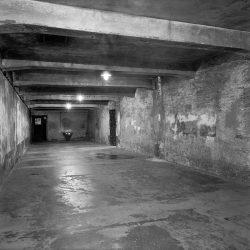 Auschwitz, gas chamber