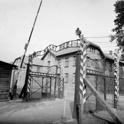 Auschwitz, entrance, barrier