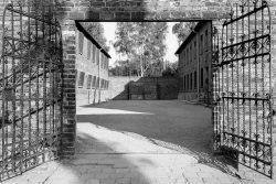 Auschwitz, death wall
