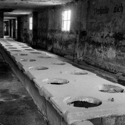 auschwitz birkenau, latrines