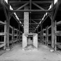 auschwitz birkenau, quarantine block