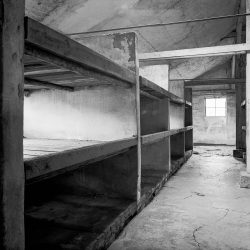 auschwitz birkenau, isolation block