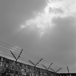 mauthausen, wall