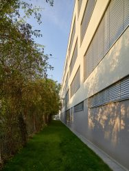 Schulerweiterung Jochbergengasse in Wien_Schluder Architektur___©_KURT HOERBST 2019