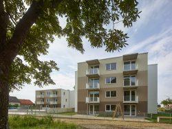 021_wohnhausanlage-deutsch-wagram_von-g.o.y.a.-architekten_by_kurt-hoerbst_145322