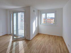 020_wohnhaus-paulusgasse-wien-2019_wga-zt_by_kurt-hoerbst_120601